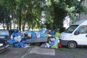W Sycowie usunięto odpady