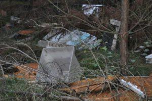 W walce ze śmiecącymi