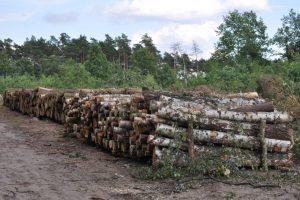 """zmniejszenie obszaru """"biomasakry"""""""