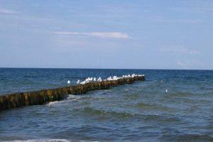 Środowisko Morza Bałtyckiego