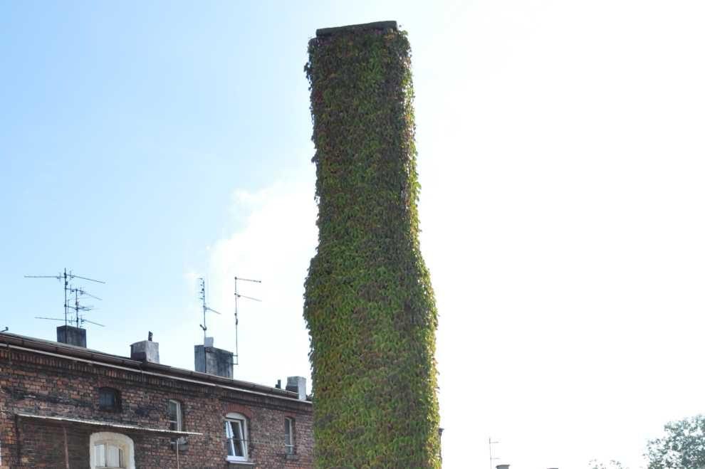 w sprawie zwiększenia celu redukcji emisji