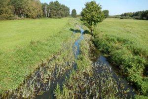 Odtworzenie małej retencji wodnej