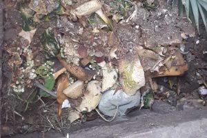 Zmiany w systemie gospodarowania odpadami