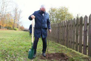 Nasadzenia drzew i krzewów miododajnych