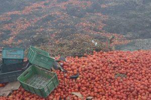 Do walki z marnotrawstwem żywności