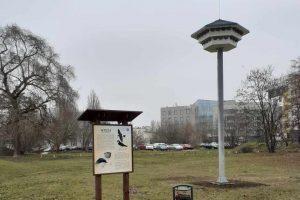 Projekty dotyczące ochrony ptaków