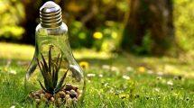 Ochrona środowiska i zrównoważony rozwój