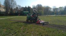 W Łodzi wysiewano łąki