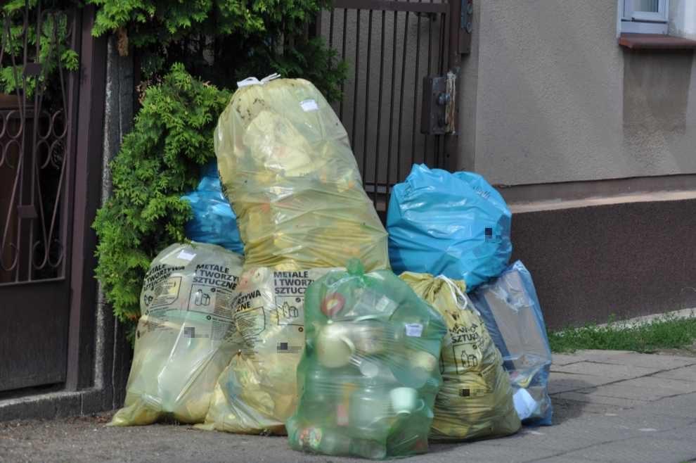 Ile odpadów odebrano