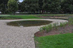 Ogród deszczowy w Lesznie