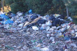 Przestępczość środowiskowa